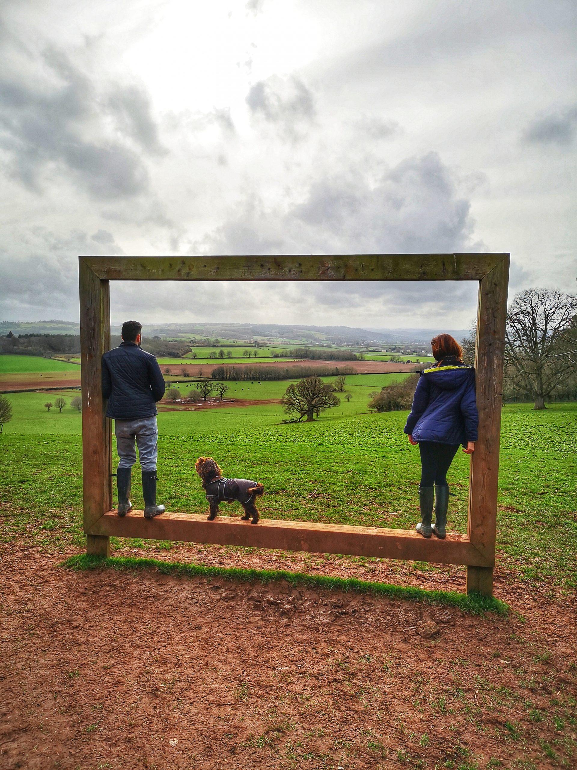 Canine Cornwall