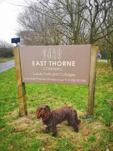East Thorne Dog Friendly Self Catering