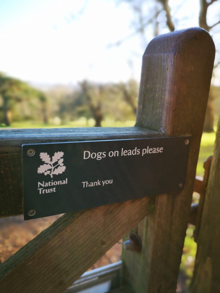 National Trust Dog Friendly Walks