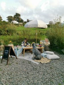 Dine With Iris Dog Friendly Picnic - Fir Hill Glamping