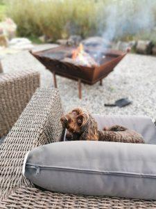 Dog Friendly Yurts Cornwall