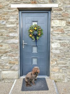 Dog friendly self catering near Watergate Bay