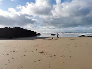 Watergate Bay Beach - Dog Friendly All Year